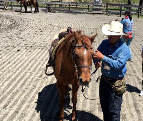 エルランチョグランデ 馬乗り前の準備