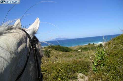 パキリビーチホースライディング 乗馬