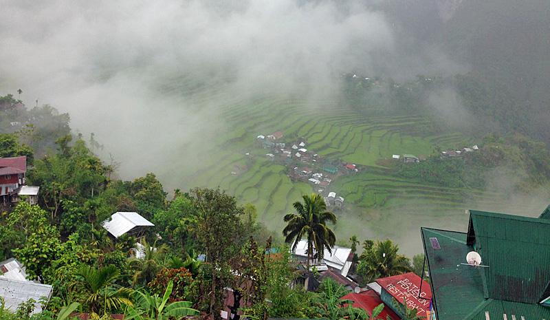 バタッド村と霧